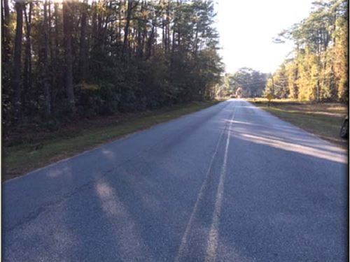 Pineora Tracts - 7 And 155 Acres : Guyton : Effingham County : Georgia