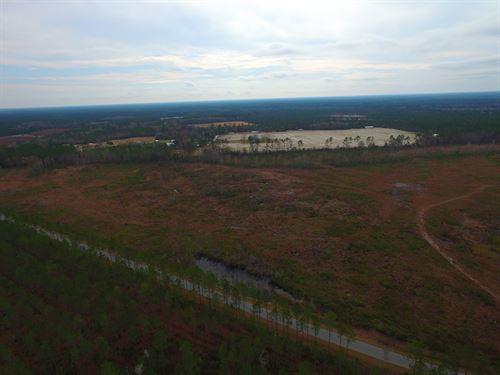 30 Acres Cutover Land : Manor : Ware County : Georgia