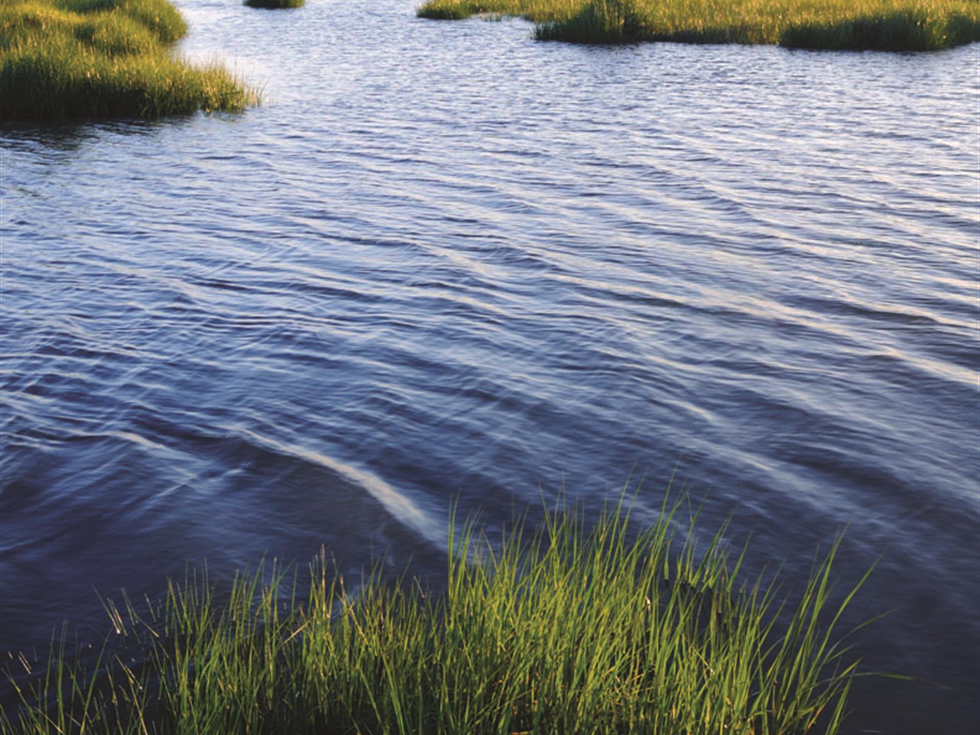 Lakefront Liquidation : Farm for Sale : Seneca : Oconee County