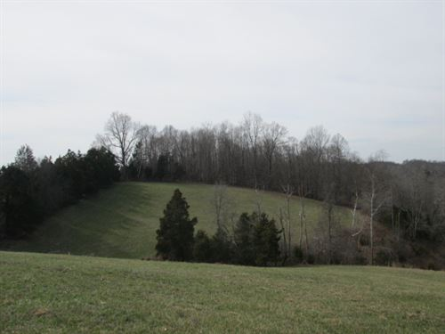 25.28 Acres In Adair County, Ky : Columbia : Adair County : Kentucky