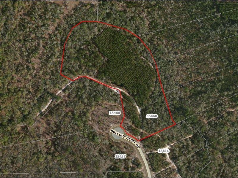 Deep Creek Florida Map.Lot 90 Deep Creek Plantation Farm For Sale Bryceville Nassau