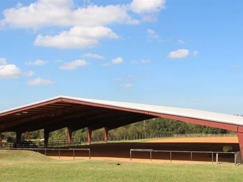 Tk Ranch : Montgomery : Texas