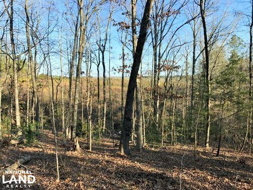 Kershaw Hunting Hardwood Timber Tra : Kershaw : South Carolina