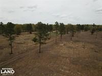 Wahee Hunting Property : Marion : Marion County : South Carolina
