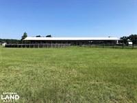 St. Matthews Horse Farm : St Matthews : Calhoun County : South Carolina
