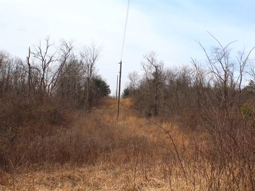 Deemer Rd - 62 Acres : Jackson : Ohio