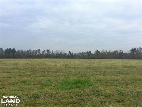 Williamsburg Recreation And Farm La : Lake City : Williamsburg County : South Carolina