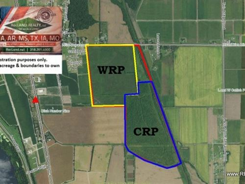 412 Ac - Crp & Wrp Deer & D : Greenville : Washington County : Mississippi
