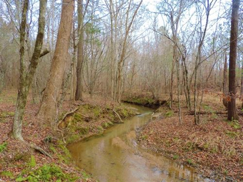 Small Hunting Tract : Carlton : Oglethorpe County : Georgia