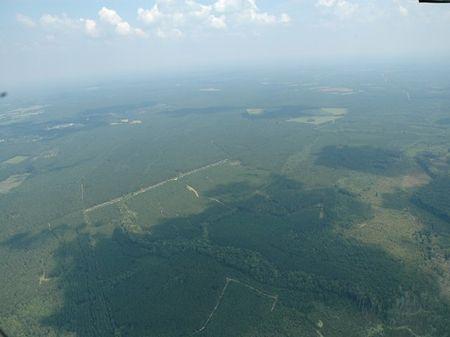 Pocotaligo Tract A : Varnville : Hampton County : South Carolina