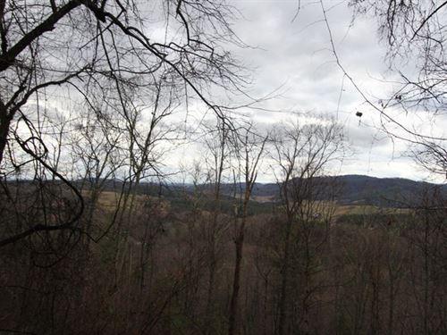 22.35 Acres Of Mature Timber : Elk Creek : Grayson County : Virginia