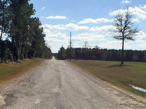 235 Acres Us 287 : Corrigan : Polk County : Texas