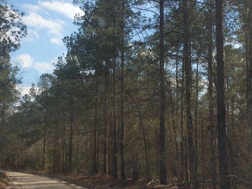 South Dixie Road Tract : Wagener : Aiken County : South Carolina