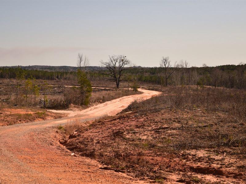 Prime Hunting Land : Lapine : Crenshaw County : Alabama