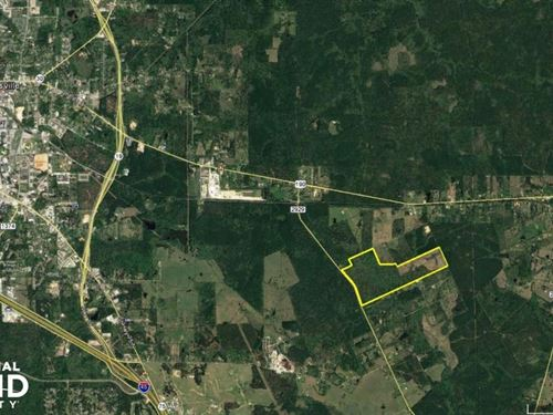 Walker County Wooded Development : Huntsville : Walker County : Texas