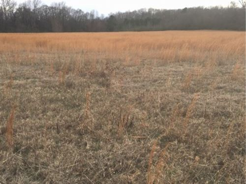 5.8 Acre Lot In Summerfield Farms : Canton : Madison County : Mississippi