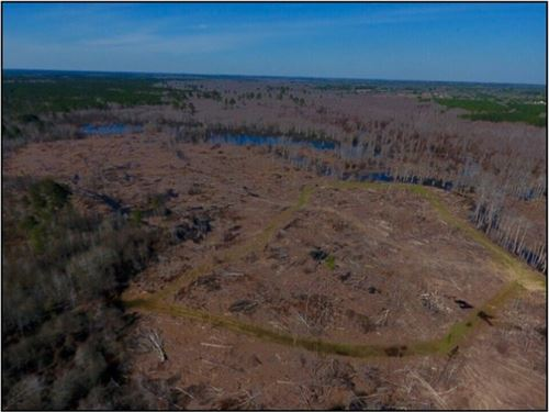 140.5 Acres In Winston County : Louisville : Winston County : Mississippi
