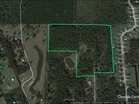 33 Acres- Blue Bird Lane : Callahan : Nassau County : Florida
