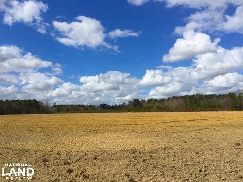 Darlington Large Acre Farm : Darlington County : South Carolina