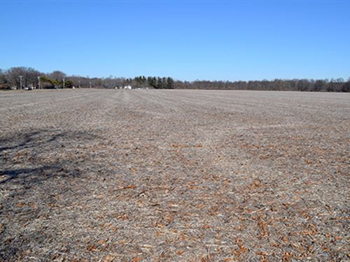Real Estate Auction - 65 Ac-1 Tract : Wheatfield : Jasper County : Indiana