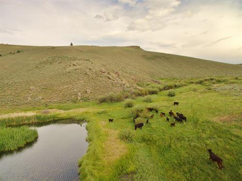 Nine Mile Ridge : Gunnison County : Colorado