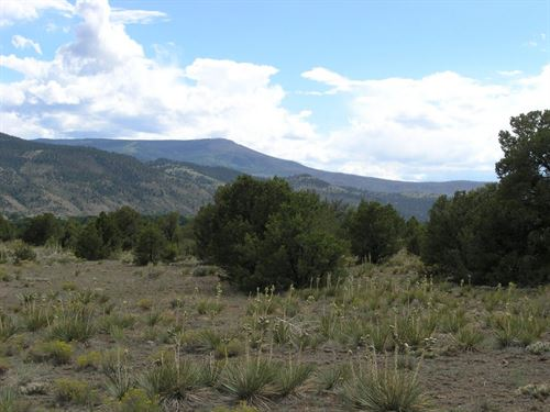 South Fork River Island Ranch : South Fork : Rio Grande County : Colorado