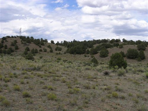 River Island Ranch Lots : South Fork : Rio Grande County : Colorado