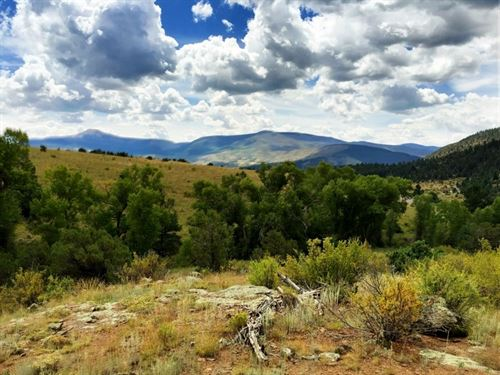 Bear Creek Lot 59 : South Fork : Rio Grande County : Colorado