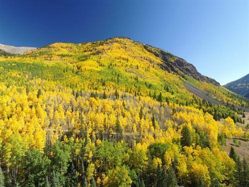 Galena Mining Claims : Lake City : Hinsdale County : Colorado