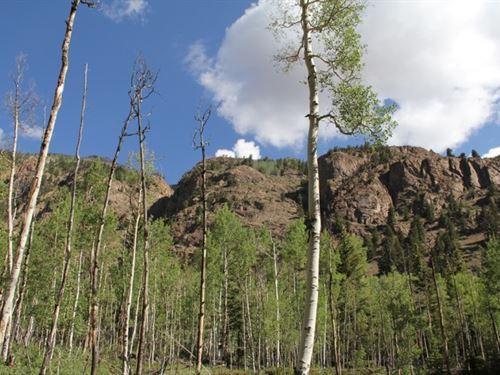 Upper Alpine Valley Acreage : Lake City : Hinsdale County : Colorado