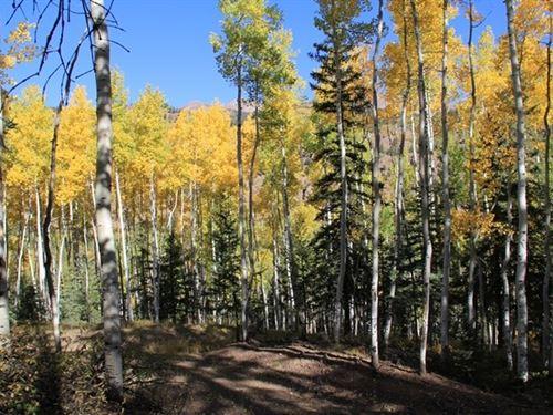 Mountain Meadows Lot 1 : Lake City : Hinsdale County : Colorado