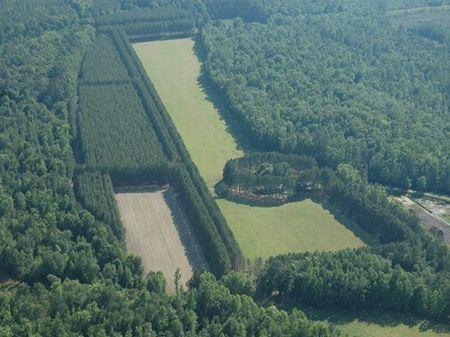 Clover Leaf Farm : Ruffin : Colleton County : South Carolina