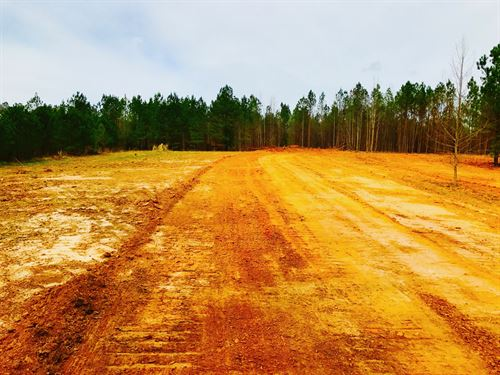 155 Acres In Blackstock, Sc : Blackstock : Chester County : South Carolina