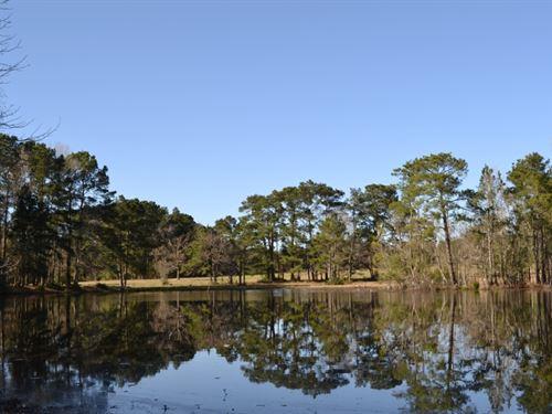 Clopton Farm : Montgomery : Texas