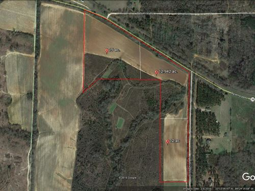 Beautiful 39 Acres, Great Homesites : Ellaville : Schley County : Georgia