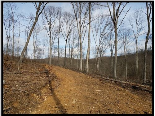 17.6 Acres In Ross County : Waverly : Ross County : Ohio