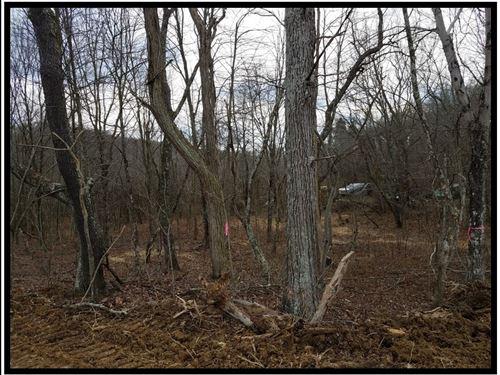 16.4 Acres On Scioto Trail Retreat : Waverly : Ross County : Ohio