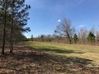 140 +/- Wooded Acres, Baldwin Co : Milledgeville : Baldwin County : Georgia