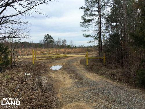 Moncure Hunting Property : Moncure : Chatham County : North Carolina
