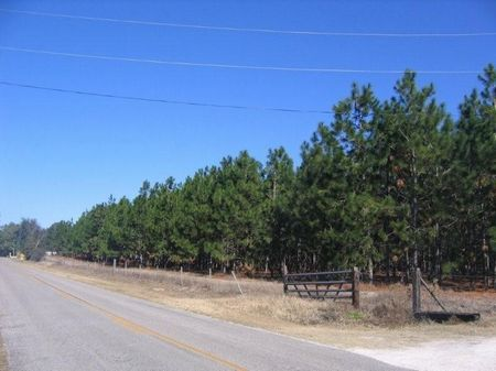 Great Investment Potential : White Springs : Columbia County : Florida