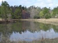 Holcombe Farm : Smoaks : Colleton County : South Carolina