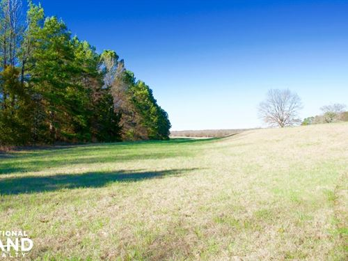 Hwy 304 - Home And Acreage : Hernando : Desoto County : Mississippi