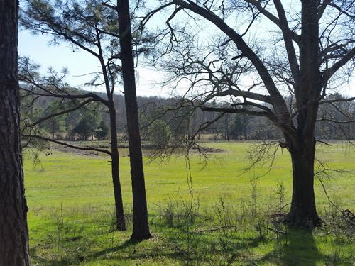200+/- Acre Farm In Talladega Co : Talladega : Alabama