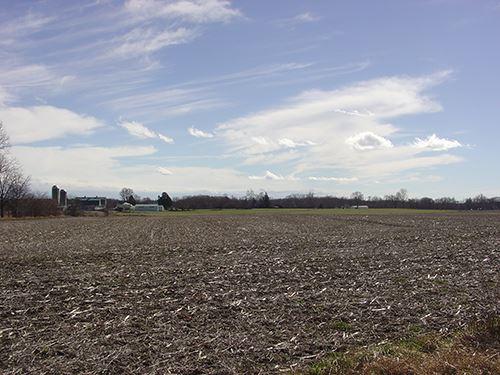 Real Estate Auction - 114.27 Acres : Auburn : De Kalb County : Indiana