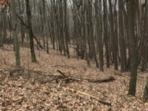 Cream Ridge Rd - 40 Acres : Lisbon : Columbiana County : Ohio