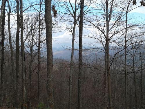 Lot 27 Timber Ridge Subdivision : Ferguson : Wilkes County : North Carolina