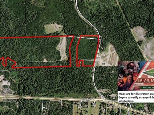 102 Ac - Timber Land & Hunting : Newton : Texas