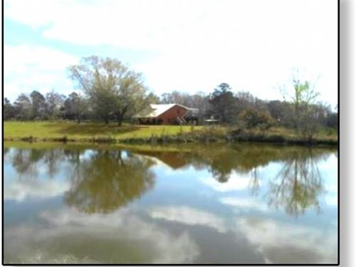 120 Acres W/ Home In Hinds County : Edwards : Hinds County : Mississippi