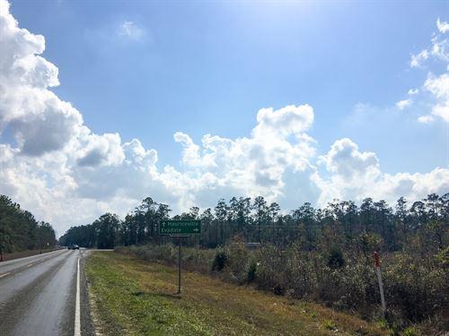 25.6 Ac Highway 62 : Buna : Jasper County : Texas