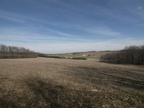 Tr 905 - 31 Acres : Perrysville : Ashland County : Ohio